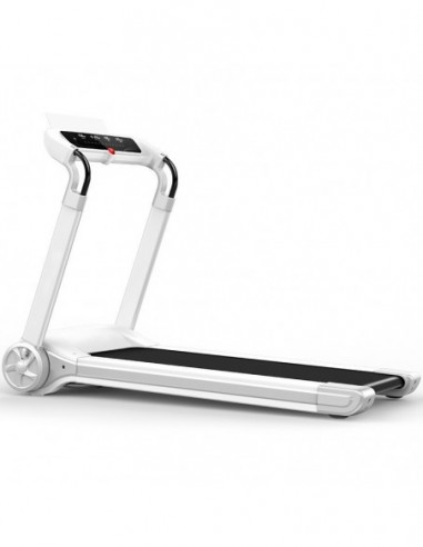 Treadmill FH 602